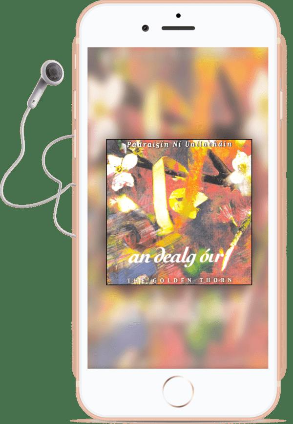 An Dealg Óir MP3 album-min